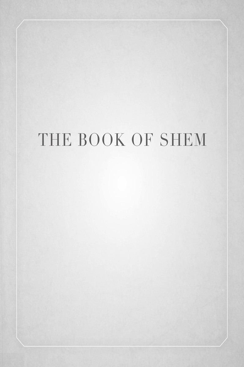 Book cover for The Book of Shem by David Kishik