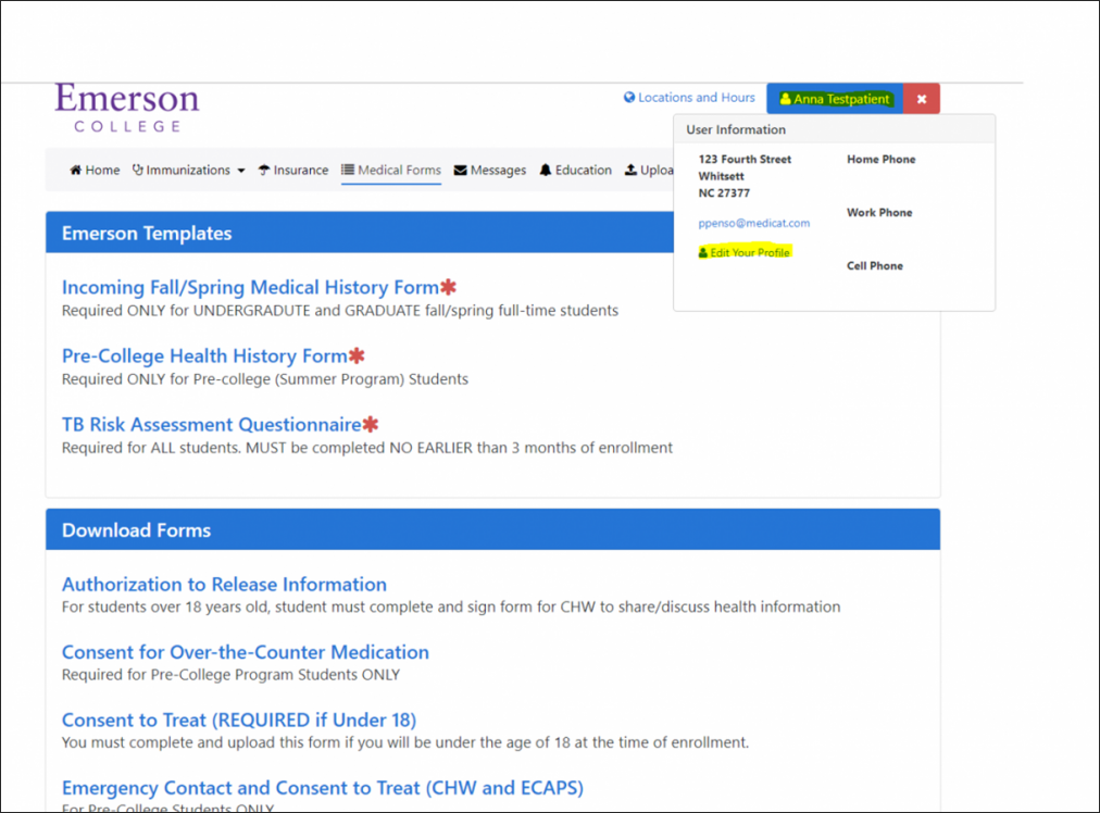 Showcase of the health portal layout regarding personal information and healthcare